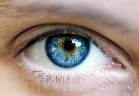 Óculos Blog - Olhos