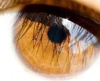 A cor dos olhos pode mesmo influenciar a visão?