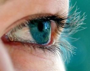 Identificada proteína essencial para manutenção da saúde dos olhos